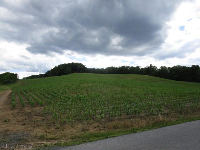 Off Ridge Road, Imler, PA - USA (photo 1)