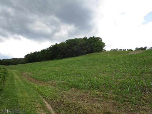 Off Ridge Road, Imler, PA - USA (photo 3)