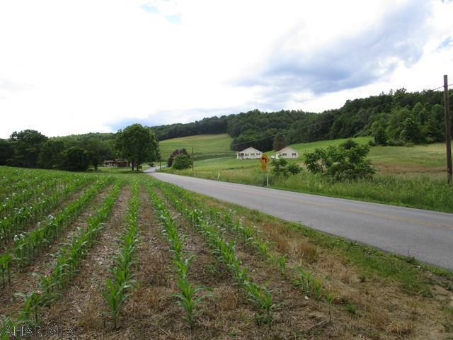 Off Ridge Road, Imler, PA - USA (photo 5)
