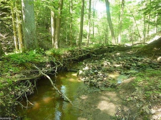 30.552 Callow (30.552 Acres) Rd, Painesville, OH - USA (photo 2)