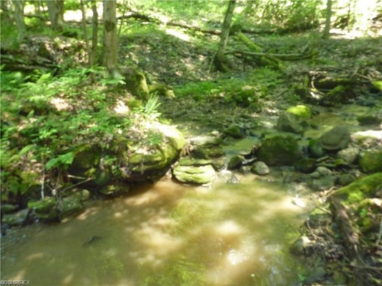 15 Callow (15 Acres) Rd, Painesville, OH - USA (photo 5)