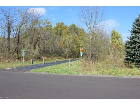 2625 Tische Rd, Rock Creek, OH - USA (photo 3)