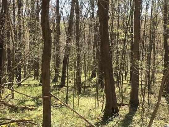 Lot 12 Deer Path, Farmington, PA - USA (photo 5)
