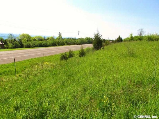 4492 Nys Route 14 Lot 2, Dundee, NY - USA (photo 4)