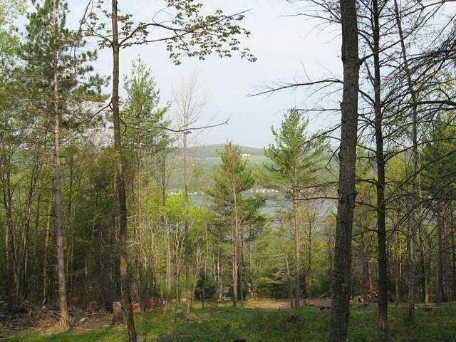 11017 Ny State Route 54, Wayne, NY - USA (photo 3)