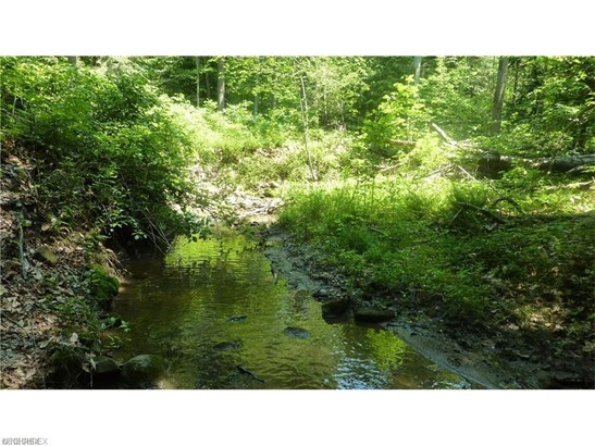 20 Callow (20 Acres) Rd, Painesville, OH - USA (photo 4)