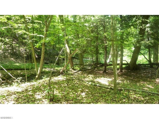 20 Callow (20 Acres) Rd, Painesville, OH - USA (photo 5)