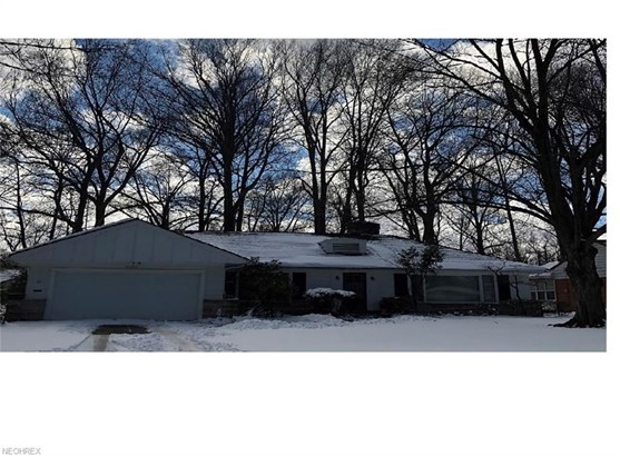 16156 Forest Hills Blvd, East Cleveland, OH - USA (photo 1)