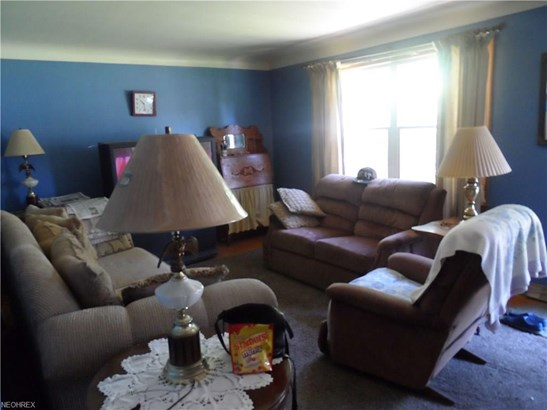 4225 Selkirk Ave, Youngstown, OH - USA (photo 4)