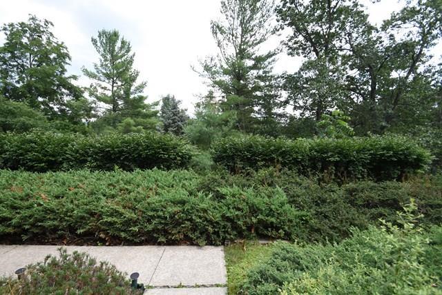950 Upland Dr, Elmira, NY - USA (photo 5)