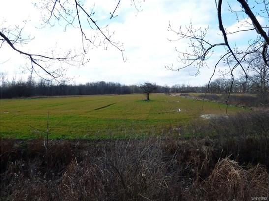6762 Errick Road, Wheatfield, NY - USA (photo 1)