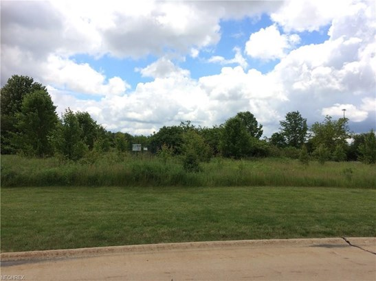 V/l Hunters Ridge Ln, Olmsted Township, OH - USA (photo 1)