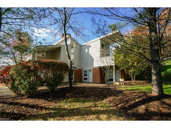 20 Riverview Ct, Bentleyville, OH - USA (photo 1)