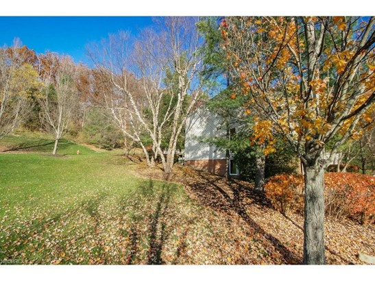 20 Riverview Ct, Bentleyville, OH - USA (photo 2)