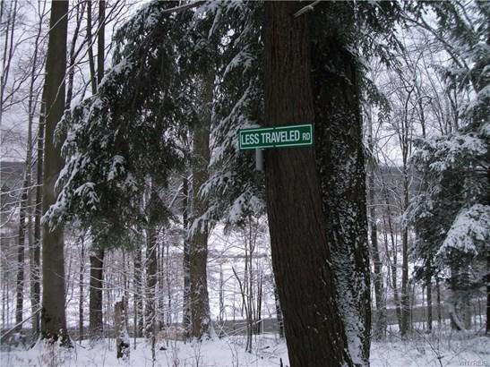 Vl Irish Road, Colden, NY - USA (photo 5)