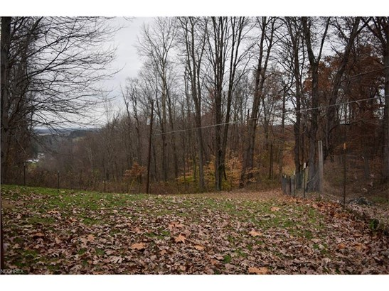 58878 Clagett Rd, New Concord, OH - USA (photo 3)