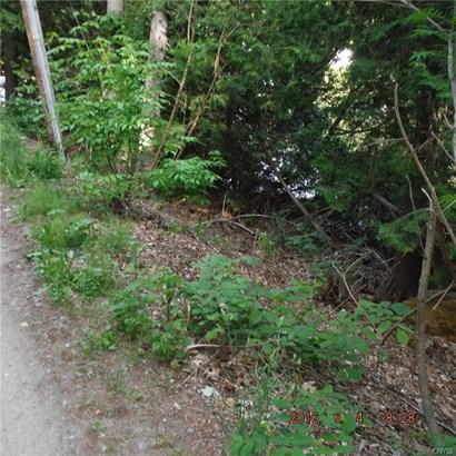 7270 Bullrock Point Road, Diana, NY - USA (photo 5)