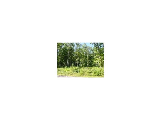 Lot 2 Lot Main Market Rd, Garrettsville, OH - USA (photo 2)