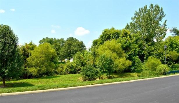 252 Alexander Lawrence Drive, Pickerington, OH - USA (photo 2)