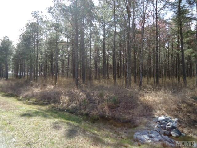 504 Riversound Dr, Edenton, NC - USA (photo 2)