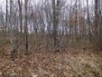 Lot 19 Shady Brook Road, Bruceton Mills, WV - USA (photo 1)