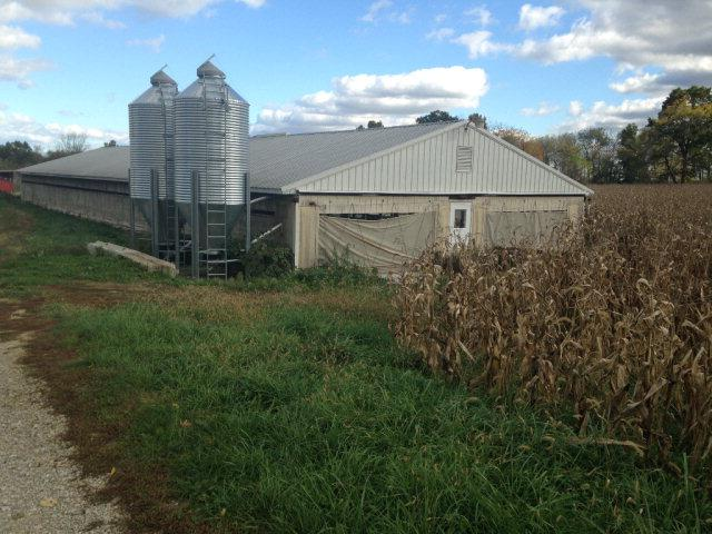 1709 Twp Rd 65, Jeromesville, OH - USA (photo 3)
