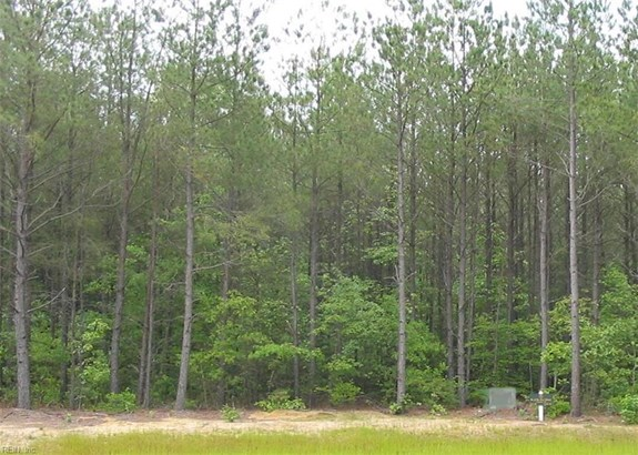 Lot 47 Plantation Pl, Little Plymth, VA - USA (photo 1)