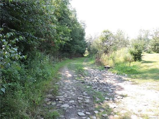 0 Crump Road, Colden, NY - USA (photo 2)