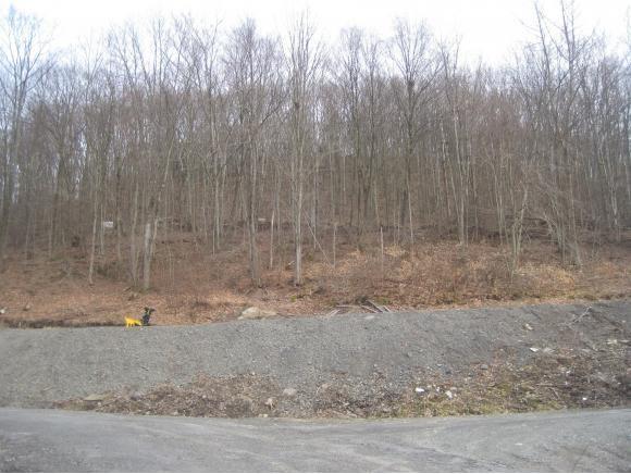 00 Prospect, Susquehanna, PA - USA (photo 1)