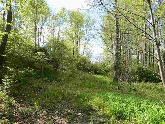 0 S Dearing Rd, Spring Arbor, MI - USA (photo 2)