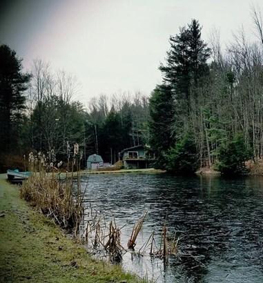 1825 Whiskey Creek Rd., Corning, NY - USA (photo 1)