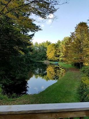 1825 Whiskey Creek Rd., Corning, NY - USA (photo 3)
