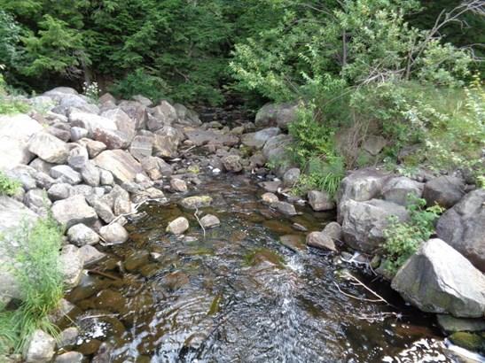 171 Lens Lake Road, Stony Creek, NY - USA (photo 3)