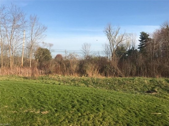 10345 Fox Hollow Cir, Twinsburg, OH - USA (photo 4)