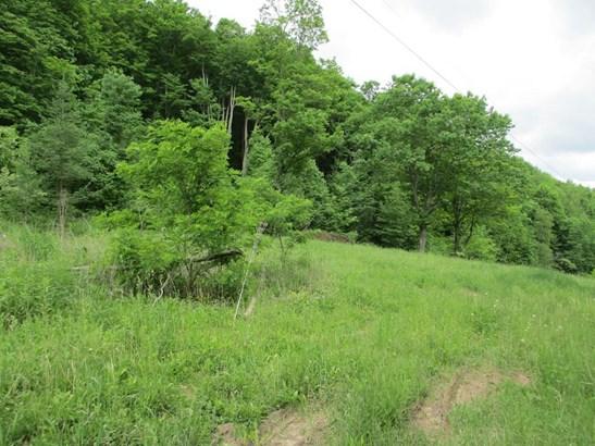 2435 Welch Mountain Rd, Covington, PA - USA (photo 3)