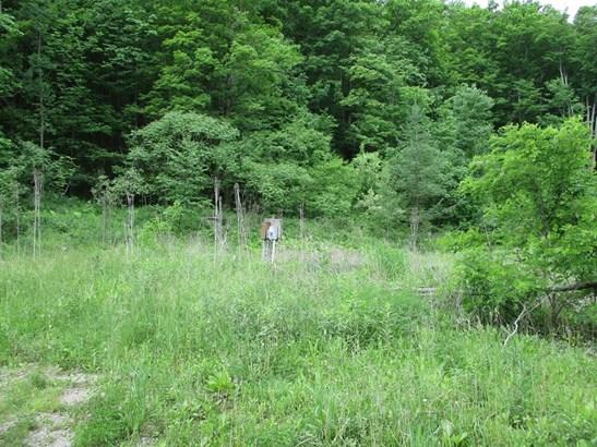 2435 Welch Mountain Rd, Covington, PA - USA (photo 4)