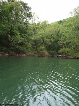 Lot 11 Cove Run Club Road, Moatsville, WV - USA (photo 2)