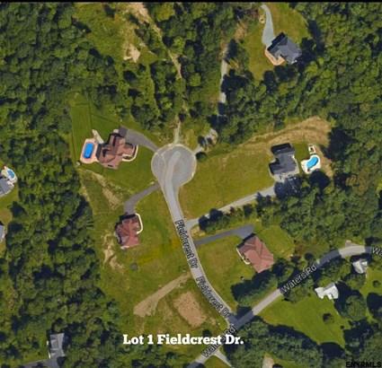 Lot 1 Fieldcrest Dr, East Greenbush, NY - USA (photo 2)