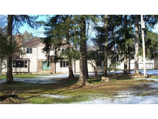 15890 Irontree Trl, Newbury, OH - USA (photo 1)