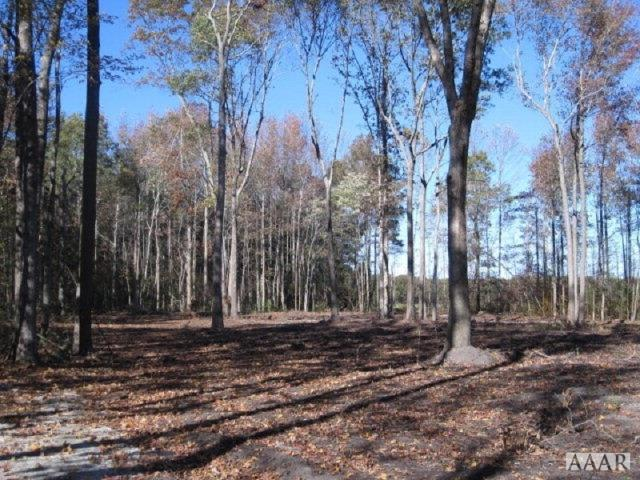 102 Walnut Acres Way, Barco, NC - USA (photo 1)