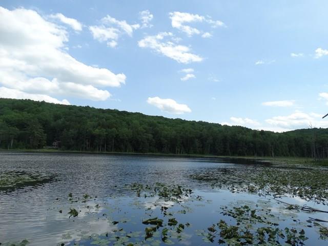 66 Tanglewood Trail, Campbell, NY - USA (photo 2)