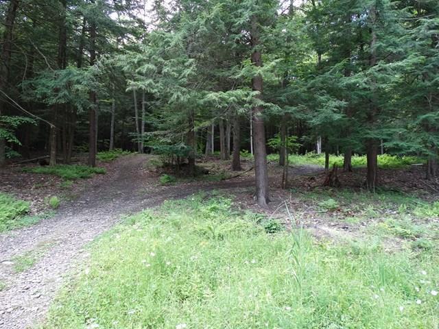 66 Tanglewood Trail, Campbell, NY - USA (photo 4)