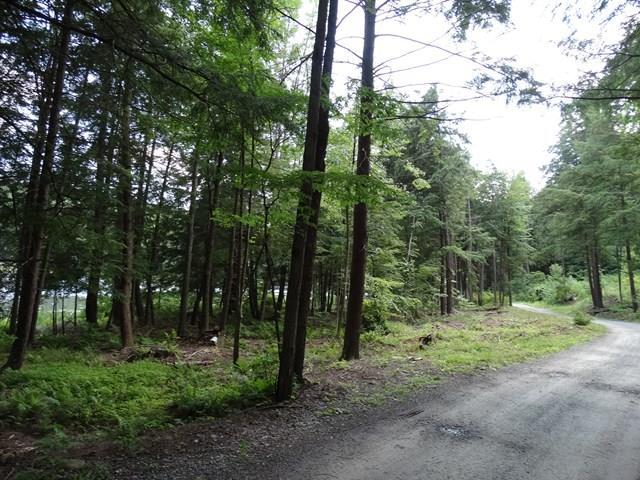 66 Tanglewood Trail, Campbell, NY - USA (photo 5)