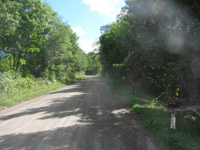 5796 Bauter Road, Avoca, NY - USA (photo 2)