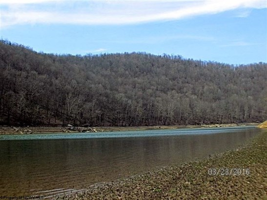 Lot 12 Cove Run Club Road, Moatsville, WV - USA (photo 4)