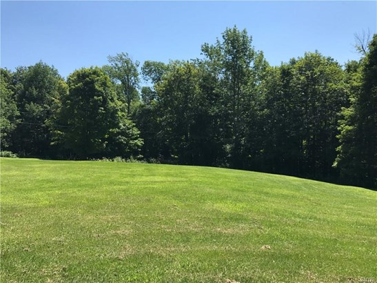 4011 Old State Road, Nelson, NY - USA (photo 1)