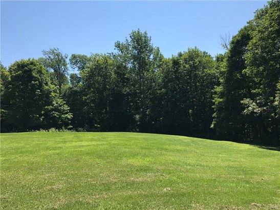 4011 Old State Road, Nelson, NY - USA (photo 2)