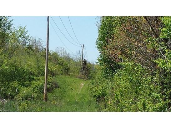 V/l State Route 43, Streetsboro, OH - USA (photo 5)