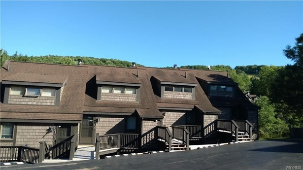 103 Brookline Rd-the Woods, Ellicottville, NY - USA (photo 2)