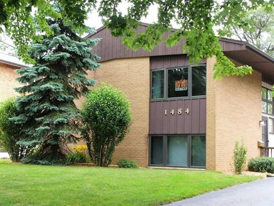 1484 West Liberty Street, Ann Arbor, MI - USA (photo 1)
